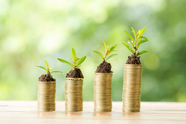 blogging investment